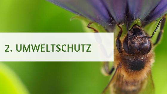 2. Umweltschutz  aufebenholz.de